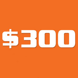 Bagworld Gift Voucher G $300